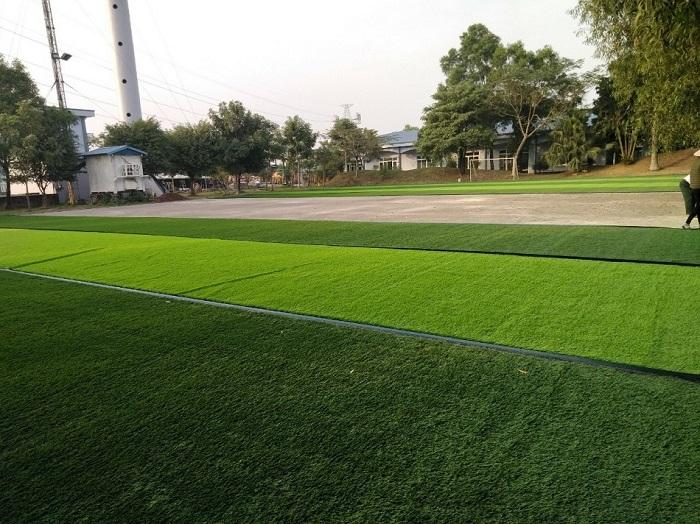 Cỏ nhân tạo Tân Phú được mô phỏng tương tự với cỏ tự nhiên